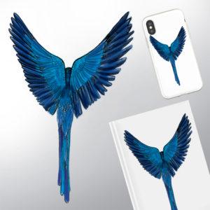 Un oiseau bleu en plein envol vue de dos dessiné au crayon coloration photoshop